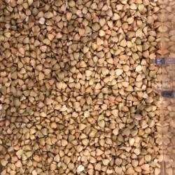 Graines de sarrasin BIO (100g)